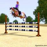 époussette équitation